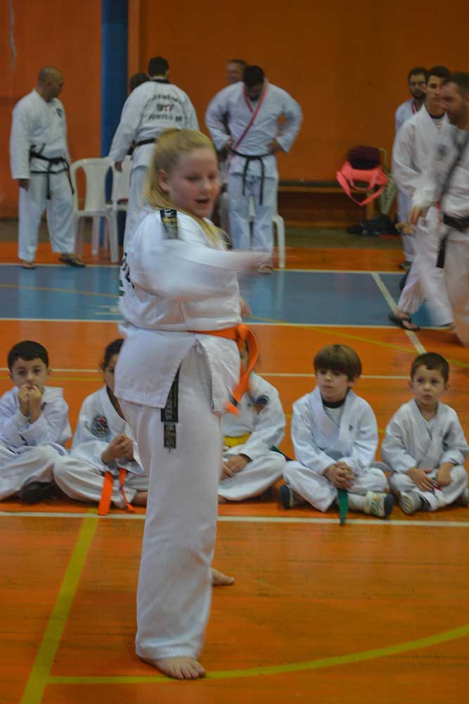 "Copa Barreto Taekwondo 2016  - <i class=""fa fa-download""></i> <a href=""../images/galeria/copa_barreto_2016/foto_11.jpg"" target=""_blank"" download>Download</a>"
