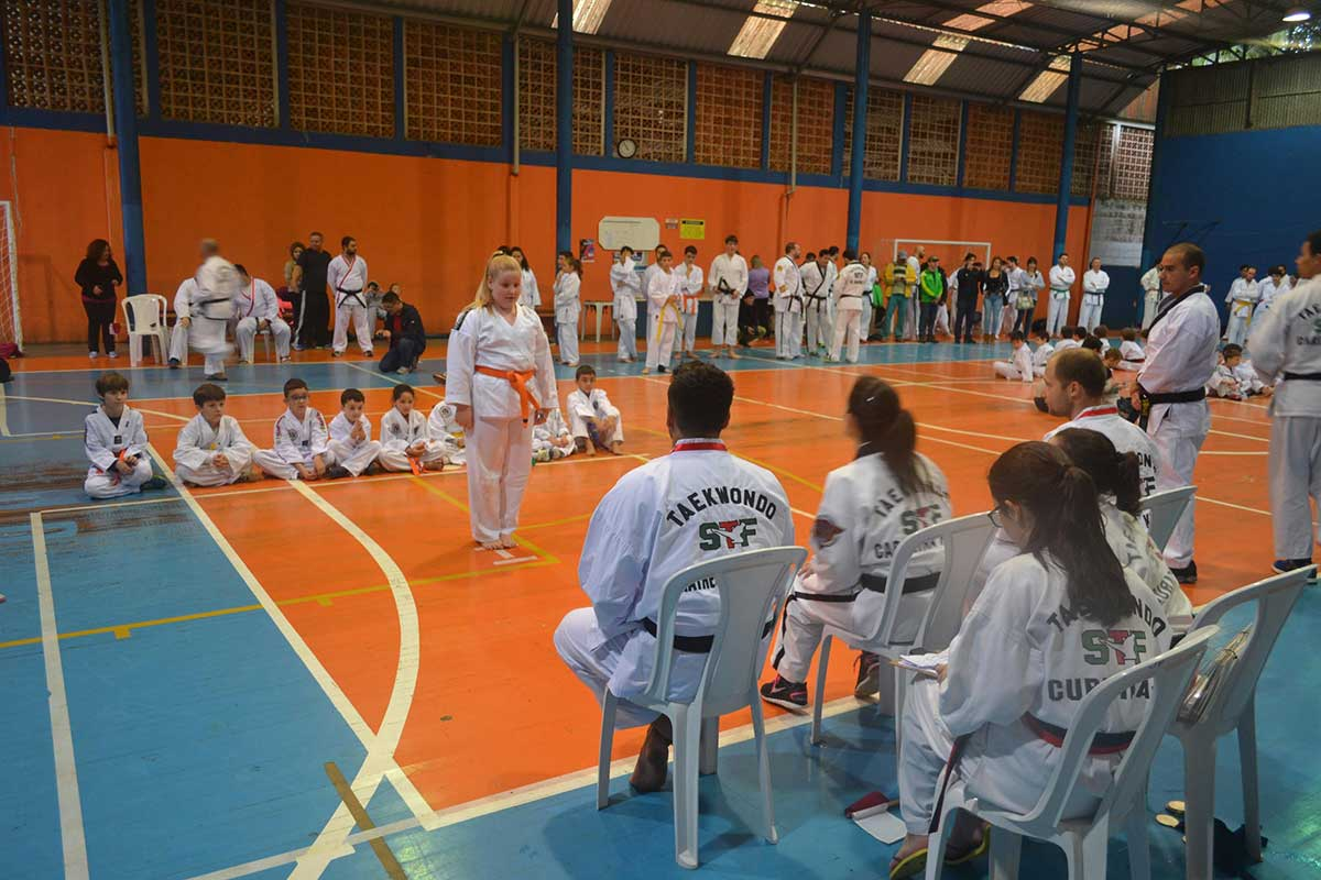 "Copa Barreto Taekwondo 2016  - <i class=""fa fa-download""></i> <a href=""../images/galeria/copa_barreto_2016/foto_12.jpg"" target=""_blank"" download>Download</a>"