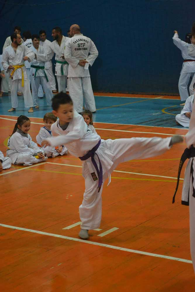 "Copa Barreto Taekwondo 2016  - <i class=""fa fa-download""></i> <a href=""../images/galeria/copa_barreto_2016/foto_14.jpg"" target=""_blank"" download>Download</a>"