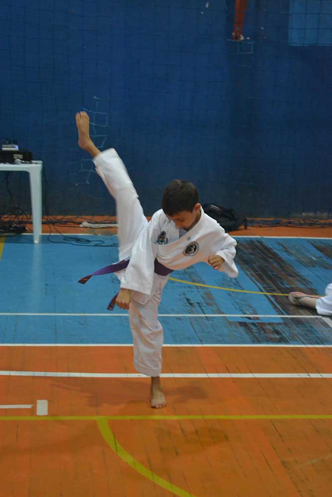 "Copa Barreto Taekwondo 2016  - <i class=""fa fa-download""></i> <a href=""../images/galeria/copa_barreto_2016/foto_15.jpg"" target=""_blank"" download>Download</a>"