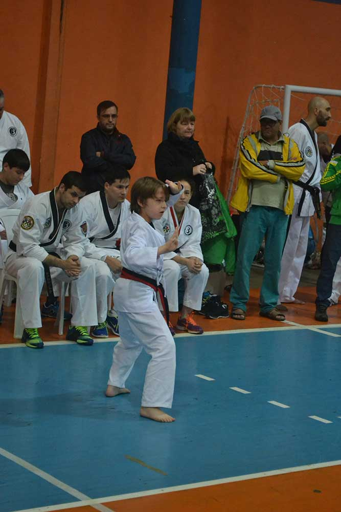 "Copa Barreto Taekwondo 2016  - <i class=""fa fa-download""></i> <a href=""../images/galeria/copa_barreto_2016/foto_16.jpg"" target=""_blank"" download>Download</a>"