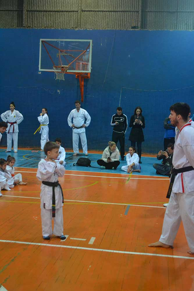"Copa Barreto Taekwondo 2016  - <i class=""fa fa-download""></i> <a href=""../images/galeria/copa_barreto_2016/foto_22.jpg"" target=""_blank"" download>Download</a>"
