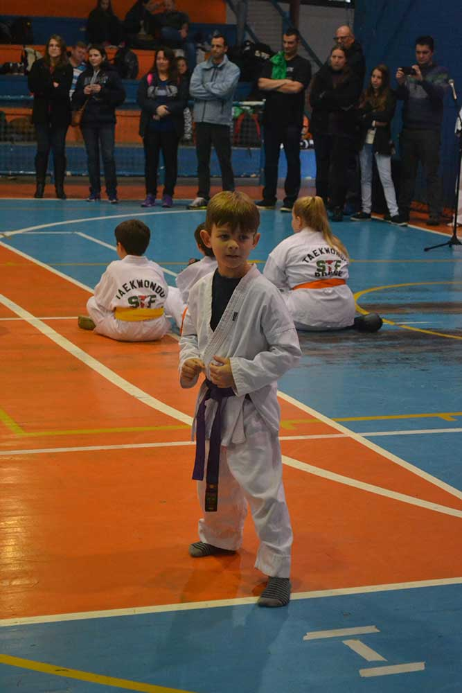 "Copa Barreto Taekwondo 2016  - <i class=""fa fa-download""></i> <a href=""../images/galeria/copa_barreto_2016/foto_26.jpg"" target=""_blank"" download>Download</a>"
