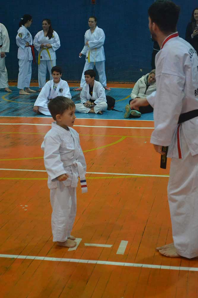 "Copa Barreto Taekwondo 2016  - <i class=""fa fa-download""></i> <a href=""../images/galeria/copa_barreto_2016/foto_29.jpg"" target=""_blank"" download>Download</a>"