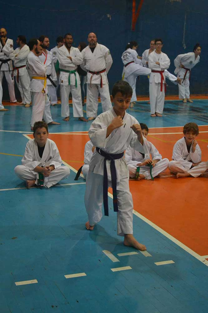 "Copa Barreto Taekwondo 2016  - <i class=""fa fa-download""></i> <a href=""../images/galeria/copa_barreto_2016/foto_31.jpg"" target=""_blank"" download>Download</a>"