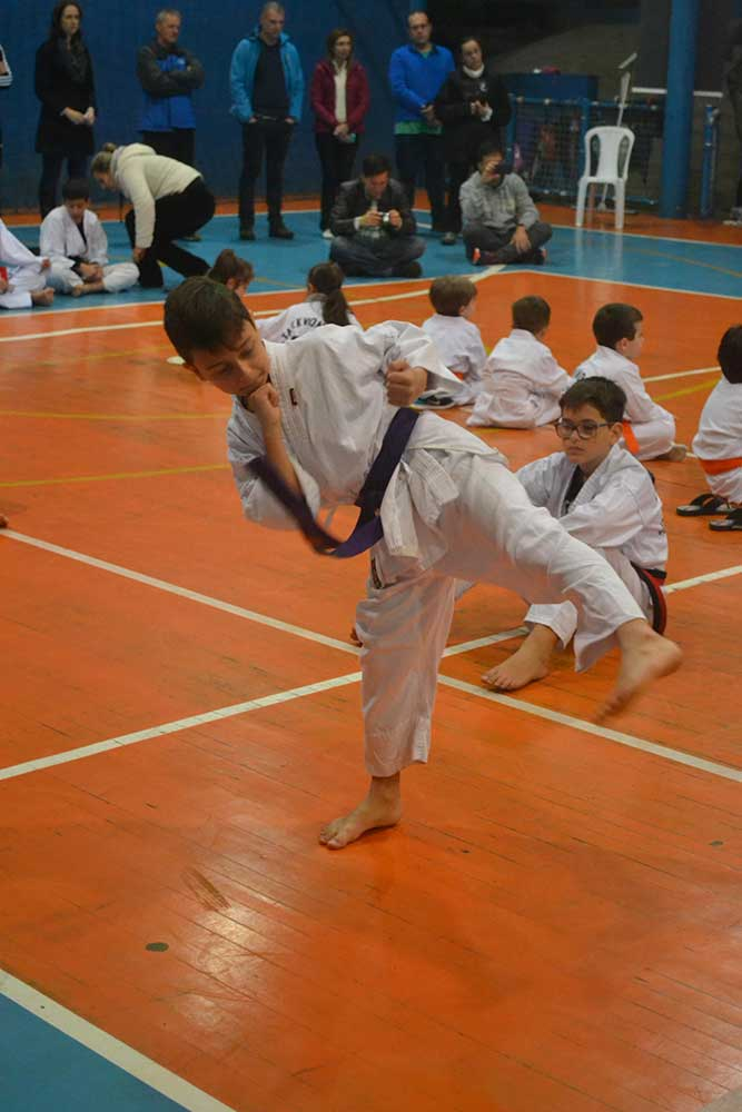 "Copa Barreto Taekwondo 2016  - <i class=""fa fa-download""></i> <a href=""../images/galeria/copa_barreto_2016/foto_32.jpg"" target=""_blank"" download>Download</a>"