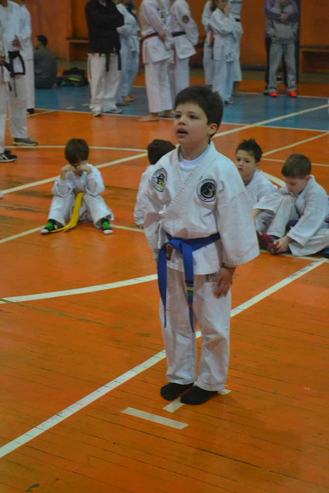 "Copa Barreto Taekwondo 2016  - <i class=""fa fa-download""></i> <a href=""../images/galeria/copa_barreto_2016/foto_34.jpg"" target=""_blank"" download>Download</a>"