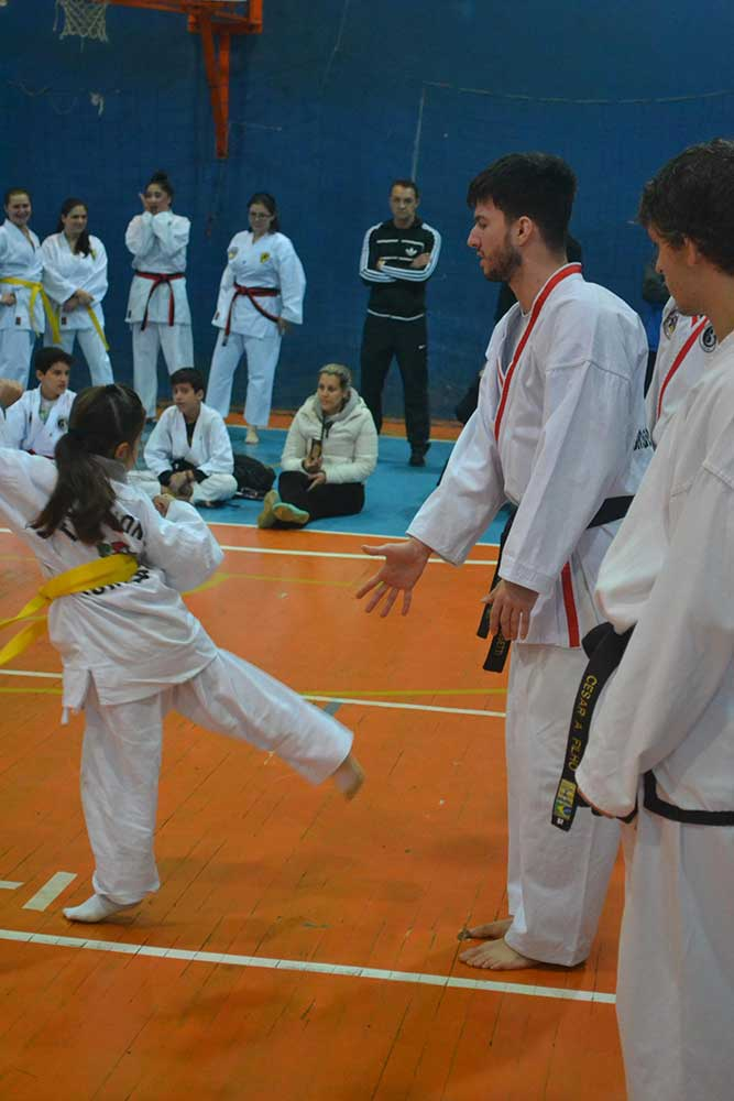 "Copa Barreto Taekwondo 2016  - <i class=""fa fa-download""></i> <a href=""../images/galeria/copa_barreto_2016/foto_35.jpg"" target=""_blank"" download>Download</a>"