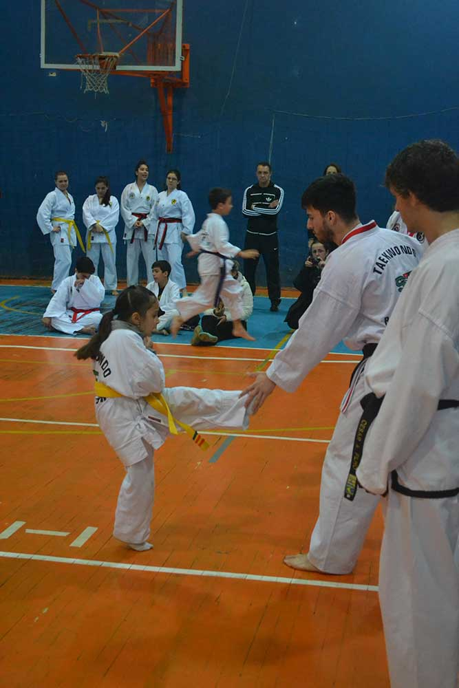 "Copa Barreto Taekwondo 2016  - <i class=""fa fa-download""></i> <a href=""../images/galeria/copa_barreto_2016/foto_36.jpg"" target=""_blank"" download>Download</a>"