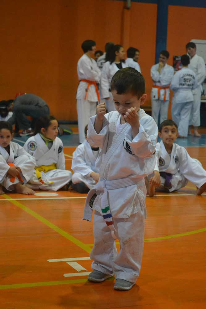 "Copa Barreto Taekwondo 2016  - <i class=""fa fa-download""></i> <a href=""../images/galeria/copa_barreto_2016/foto_38.jpg"" target=""_blank"" download>Download</a>"