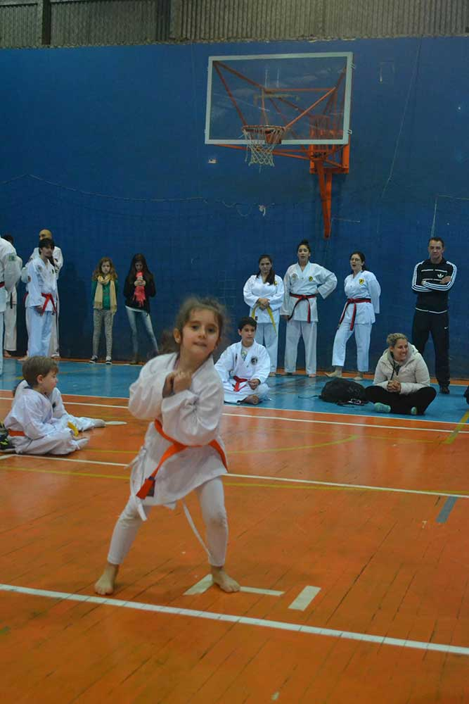"Copa Barreto Taekwondo 2016  - <i class=""fa fa-download""></i> <a href=""../images/galeria/copa_barreto_2016/foto_39.jpg"" target=""_blank"" download>Download</a>"