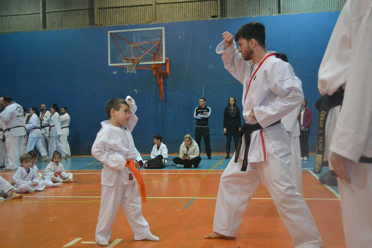 "Copa Barreto Taekwondo 2016  - <i class=""fa fa-download""></i> <a href=""../images/galeria/copa_barreto_2016/foto_42.jpg"" target=""_blank"" download>Download</a>"