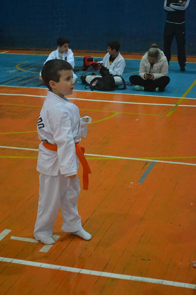 "Copa Barreto Taekwondo 2016  - <i class=""fa fa-download""></i> <a href=""../images/galeria/copa_barreto_2016/foto_44.jpg"" target=""_blank"" download>Download</a>"