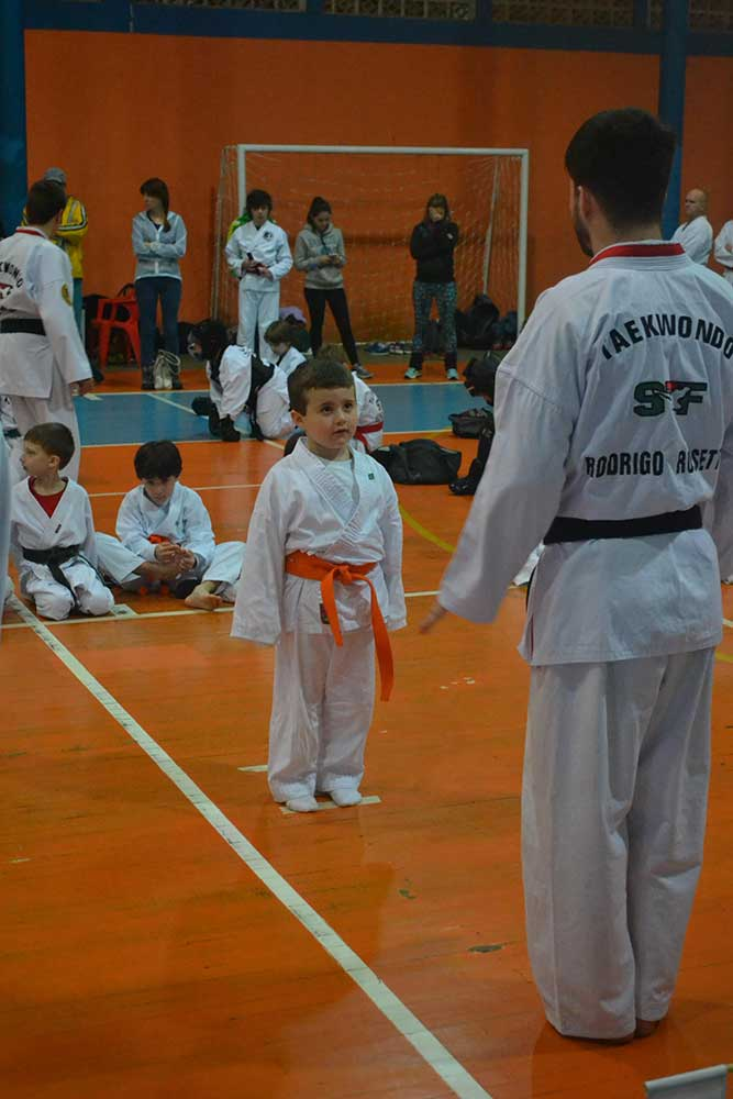 "Copa Barreto Taekwondo 2016  - <i class=""fa fa-download""></i> <a href=""../images/galeria/copa_barreto_2016/foto_46.jpg"" target=""_blank"" download>Download</a>"