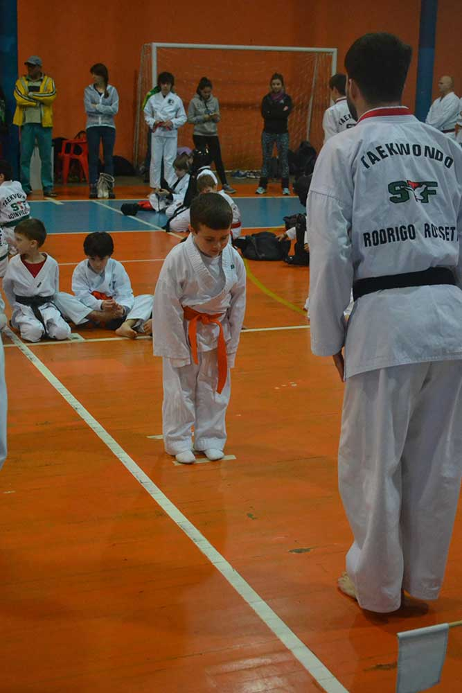 "Copa Barreto Taekwondo 2016  - <i class=""fa fa-download""></i> <a href=""../images/galeria/copa_barreto_2016/foto_47.jpg"" target=""_blank"" download>Download</a>"