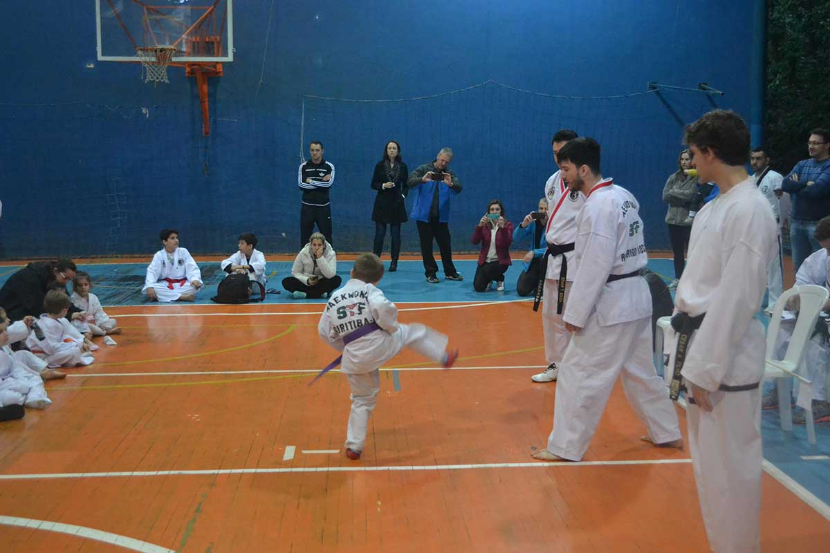 "Copa Barreto Taekwondo 2016  - <i class=""fa fa-download""></i> <a href=""../images/galeria/copa_barreto_2016/foto_51.jpg"" target=""_blank"" download>Download</a>"