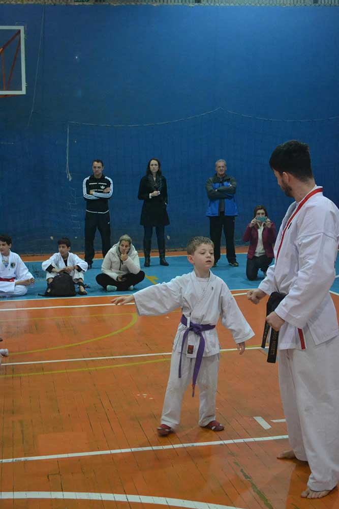 "Copa Barreto Taekwondo 2016  - <i class=""fa fa-download""></i> <a href=""../images/galeria/copa_barreto_2016/foto_52.jpg"" target=""_blank"" download>Download</a>"