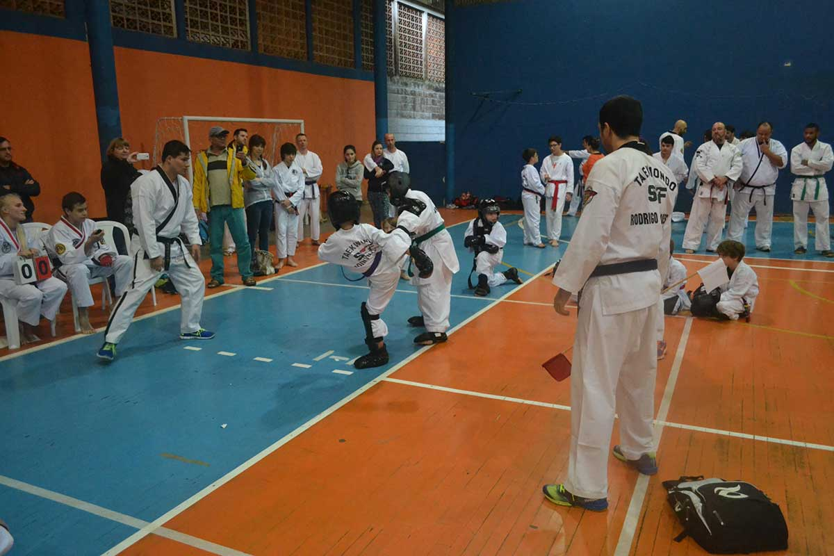 "Copa Barreto Taekwondo 2016  - <i class=""fa fa-download""></i> <a href=""../images/galeria/copa_barreto_2016/foto_58.jpg"" target=""_blank"" download>Download</a>"