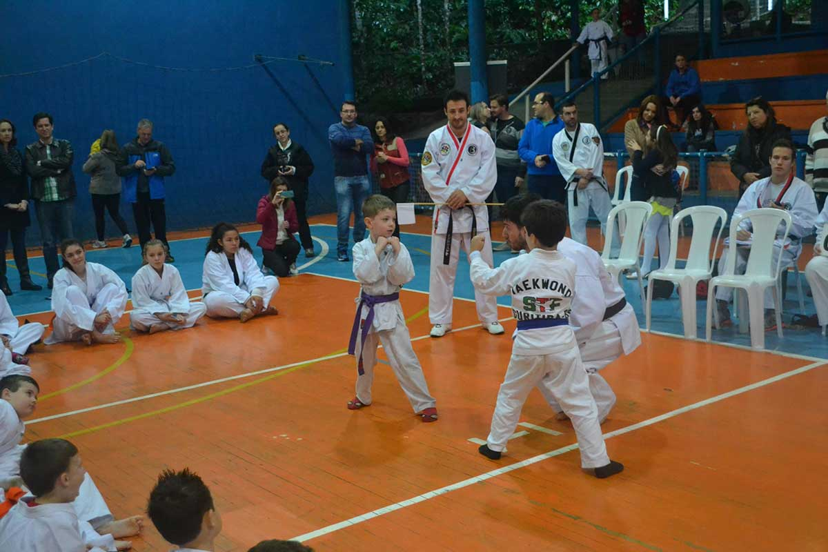 "Copa Barreto Taekwondo 2016  - <i class=""fa fa-download""></i> <a href=""../images/galeria/copa_barreto_2016/foto_62.jpg"" target=""_blank"" download>Download</a>"