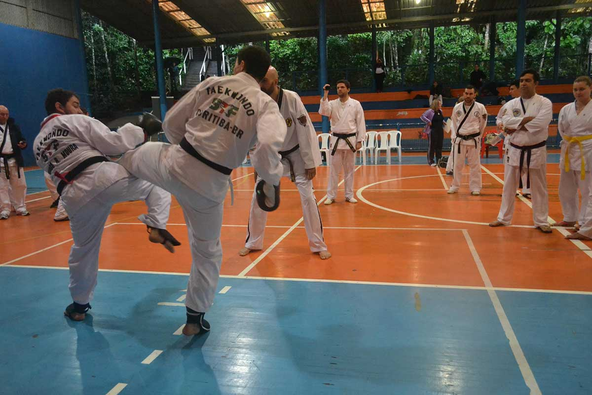 "Copa Barreto Taekwondo 2016  - <i class=""fa fa-download""></i> <a href=""../images/galeria/copa_barreto_2016/foto_74.jpg"" target=""_blank"" download>Download</a>"