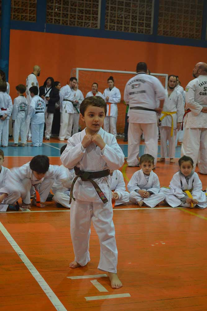 "Copa Barreto Taekwondo 2016  - <i class=""fa fa-download""></i> <a href=""../images/galeria/copa_barreto_2016/foto_9.jpg"" target=""_blank"" download>Download</a>"